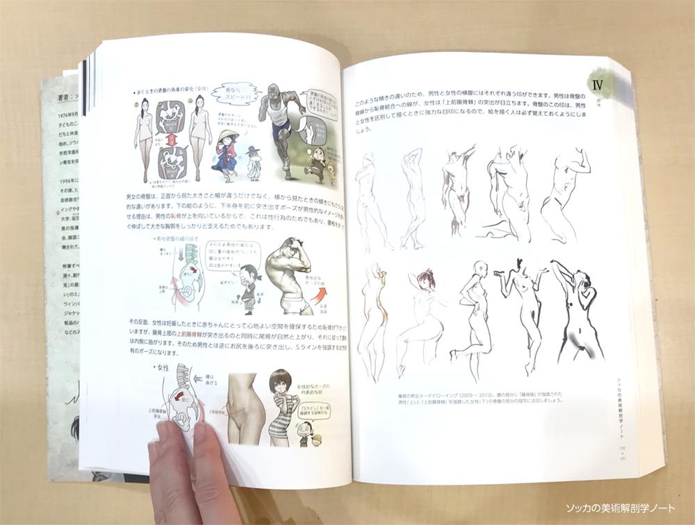 ソッカの美術解剖図 著者の考察ページ